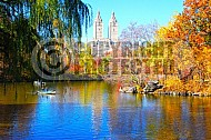 Foliage New York City Central Park 010