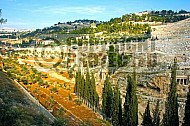 Jerusalem Kedron Valley 006