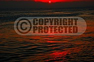 Florida Sunrise 007