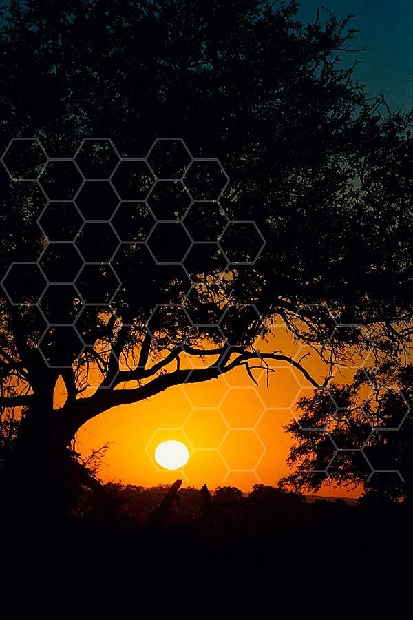 Africa Sunset 002