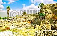 Tel Megiddo Ruins 012