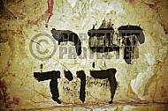 King David Tomb 0021