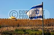 Israel Flag 009