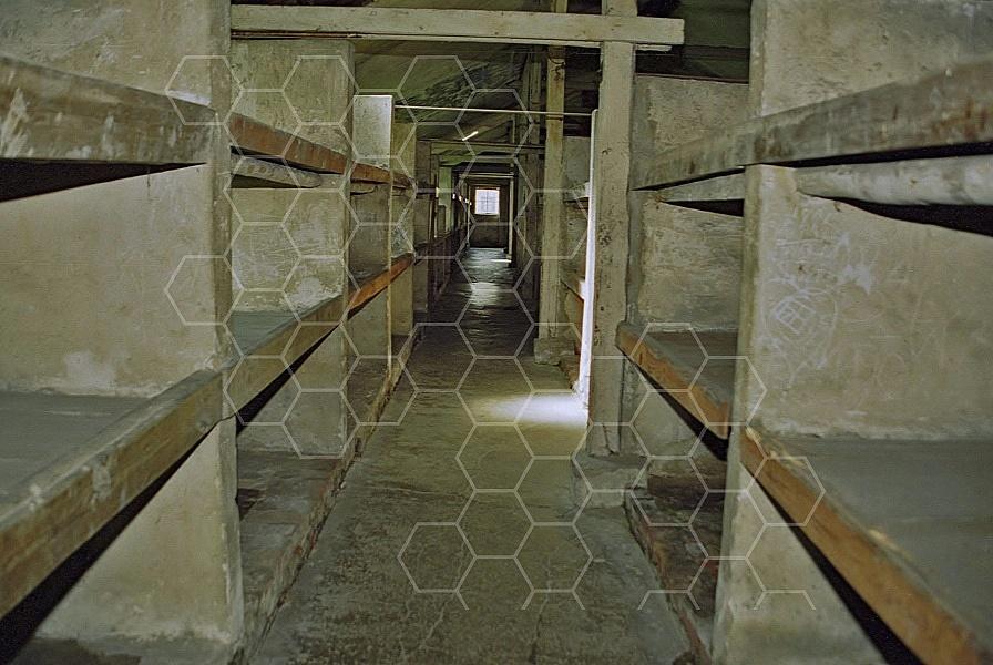 Birkenau Camp Barracks 0010